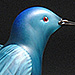 Never Far From Paradise, Molly Stone - Hand Sculpted Glass Bluebird